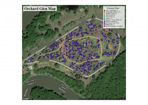 This image shows the Orchard Glen Park map and tree variety's.