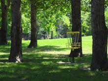 This image shows disc golf at Trollwood Park.