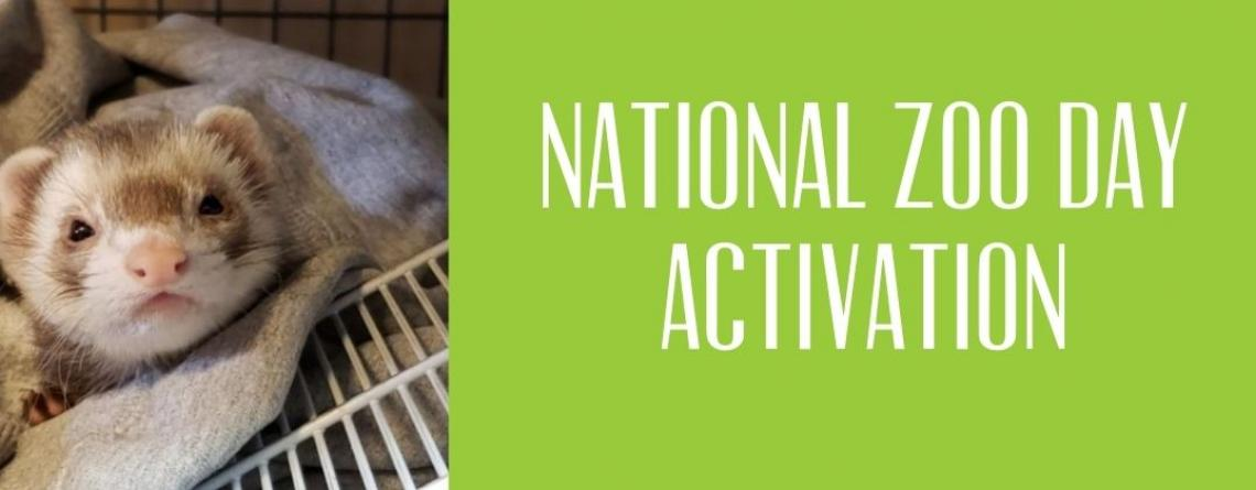 This image shows a ferret from the zoo and the words national Zoo Day Activation.