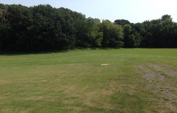 This image shows the grassy area of Holm Park.