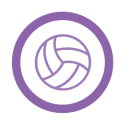This image shows an icon of volleyball
