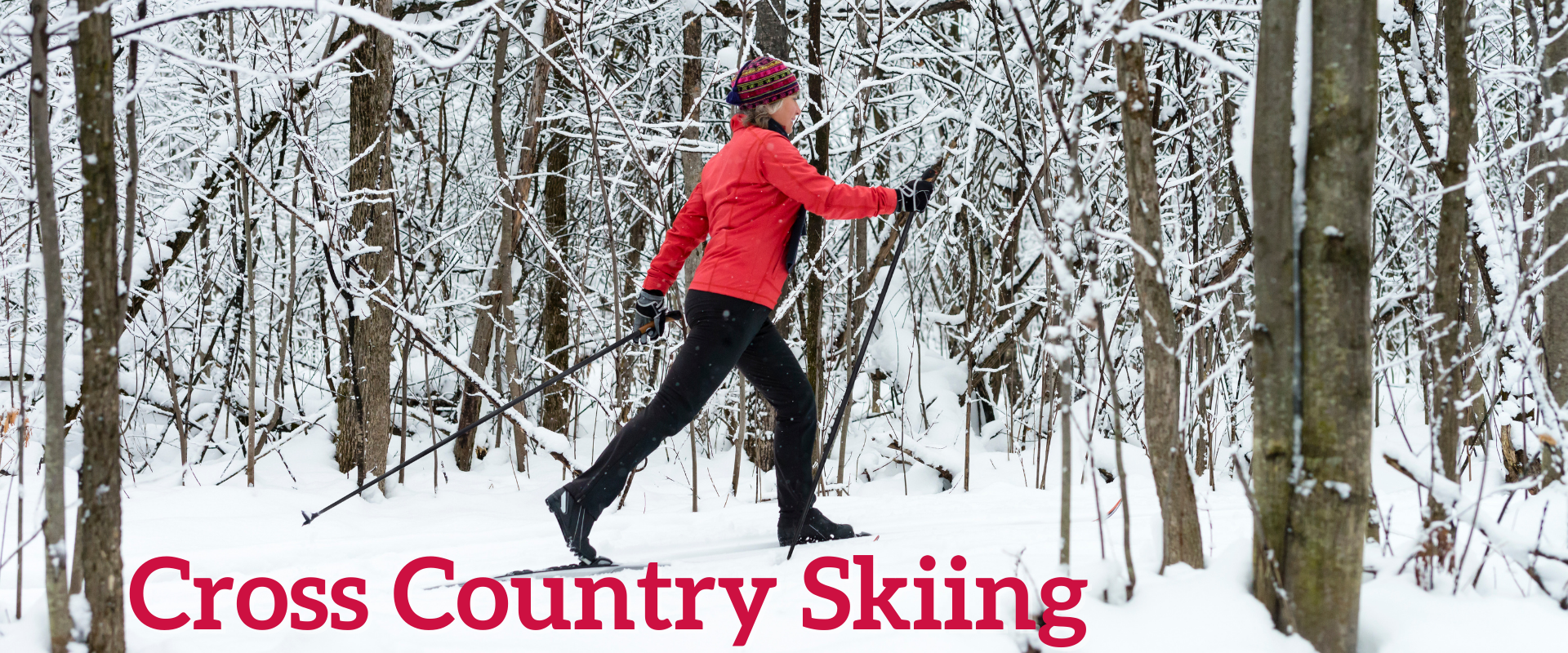 This image shows a female on a cross country ski trail through the trees.