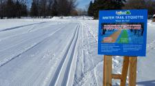 This image shows the cross country ski trail etiquette sign.