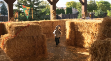 This image shows the straw bale maze at Fall in Fargo.